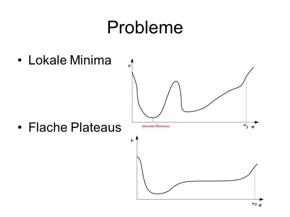 Probleme Lokale Minima Flache Plateaus