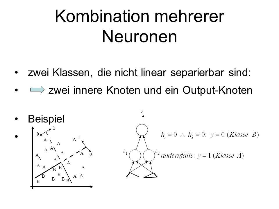 Kombination mehrerer Neuronen