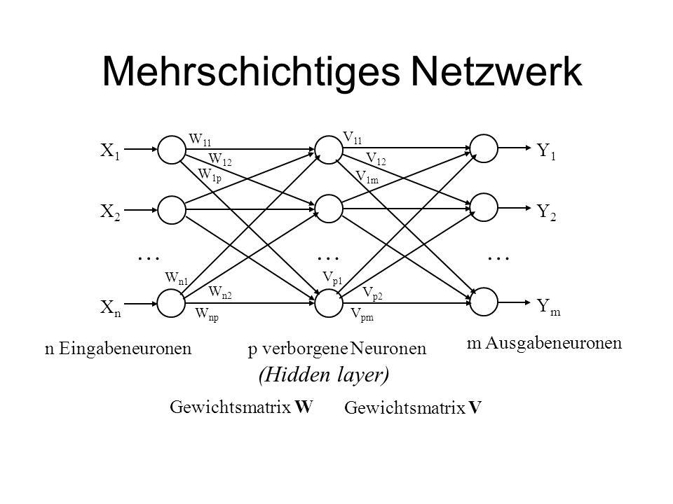 Mehrschichtiges Netzwerk
