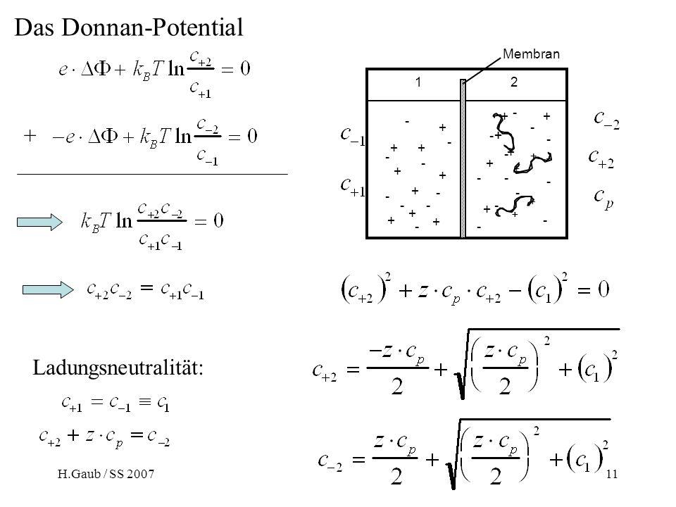 Das Donnan-Potential + Ladungsneutralität: Membran + - 1 2