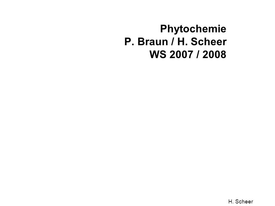 Phytochemie P. Braun / H. Scheer WS 2007 / 2008