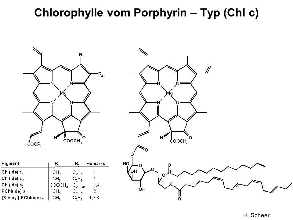 Chlorophylle vom Porphyrin – Typ (Chl c)