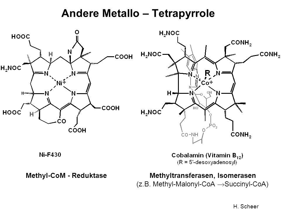 Andere Metallo – Tetrapyrrole