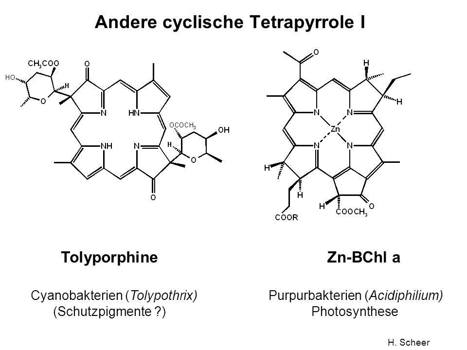 Andere cyclische Tetrapyrrole I