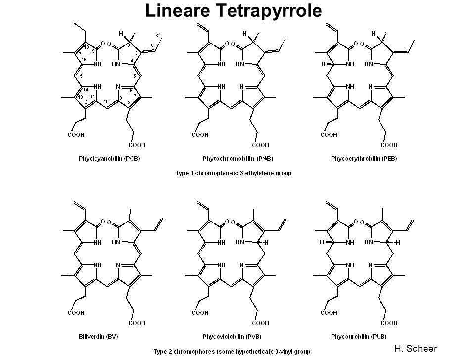 Lineare Tetrapyrrole