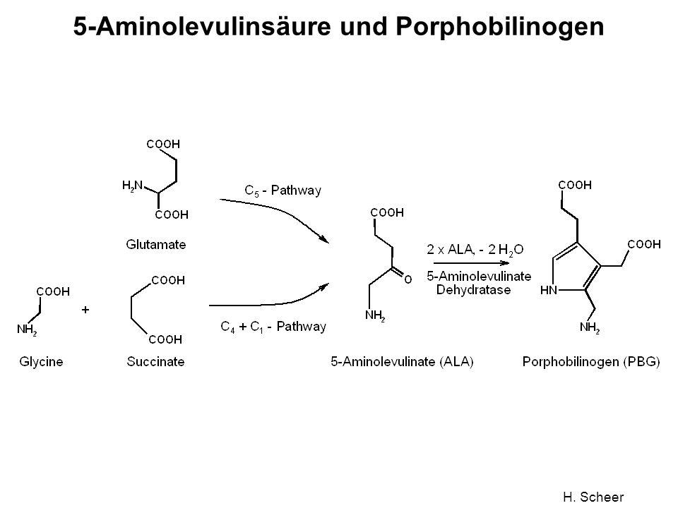 5-Aminolevulinsäure und Porphobilinogen
