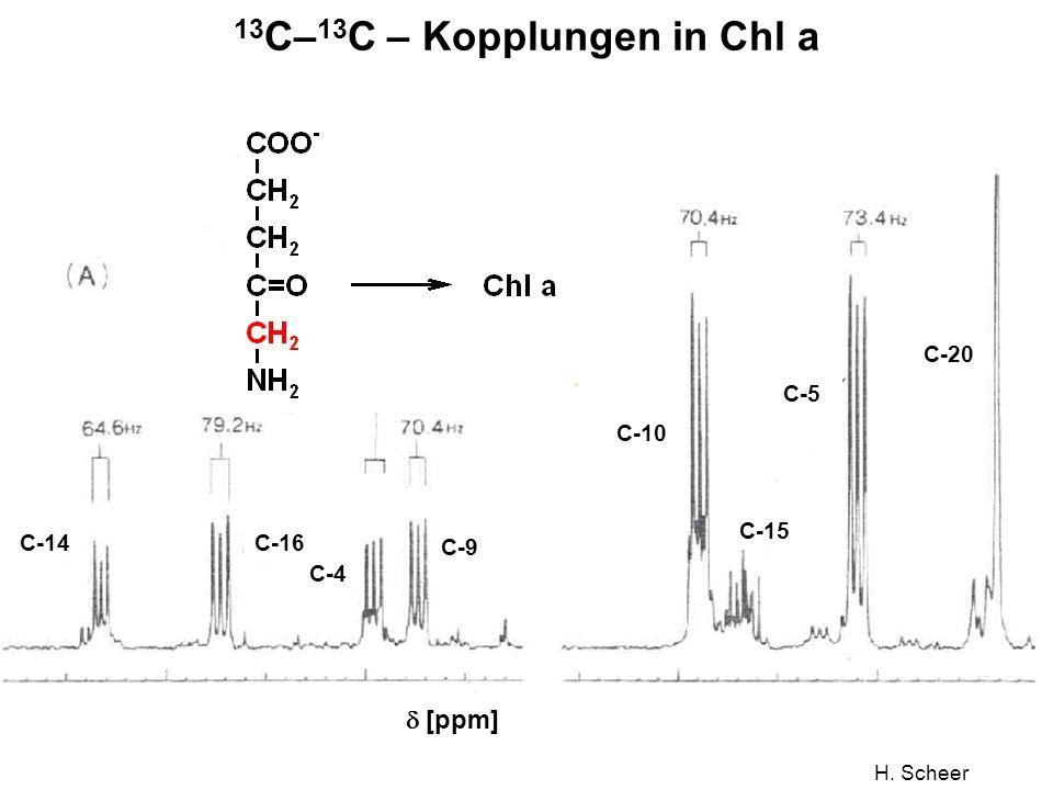 13C–13C – Kopplungen in Chl a