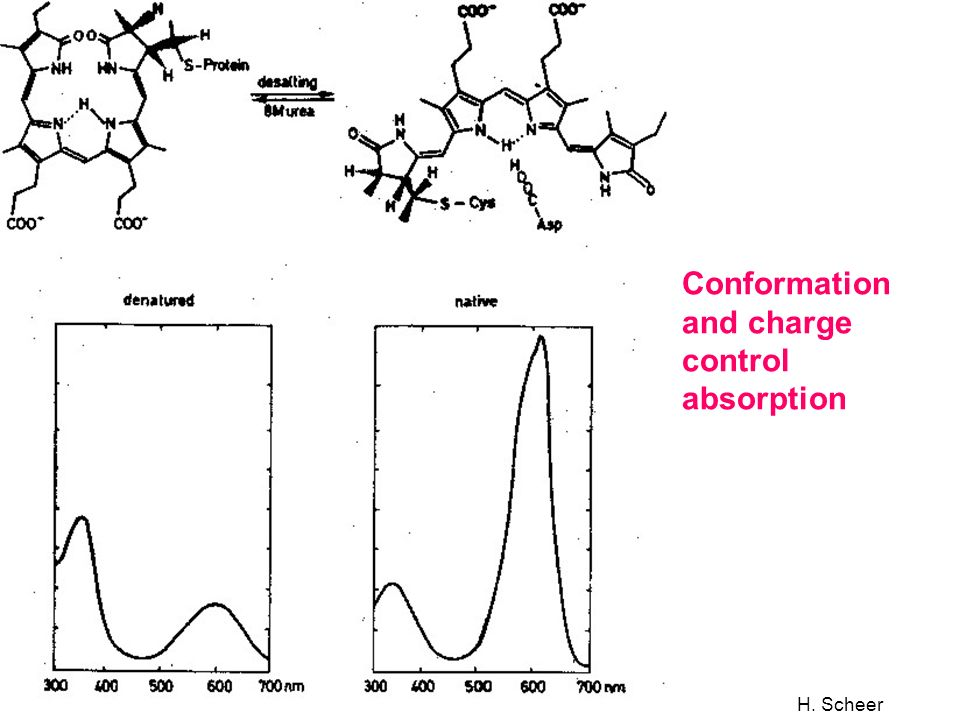 Conformation and charge control absorption