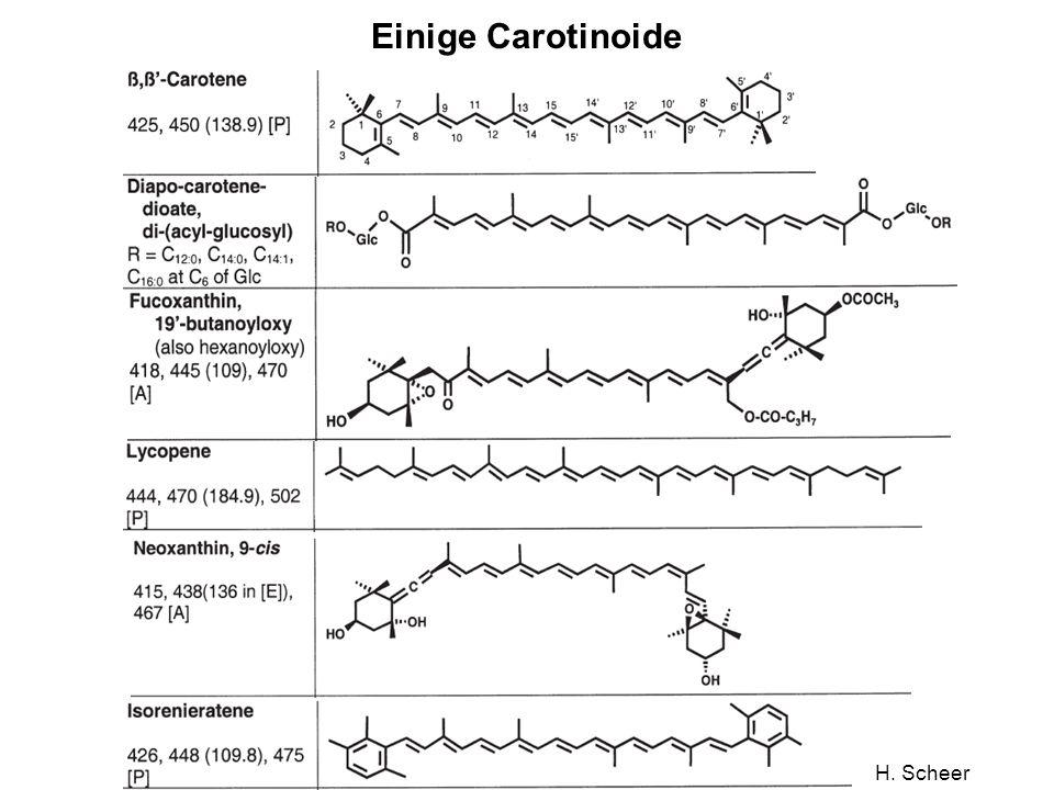 Einige Carotinoide