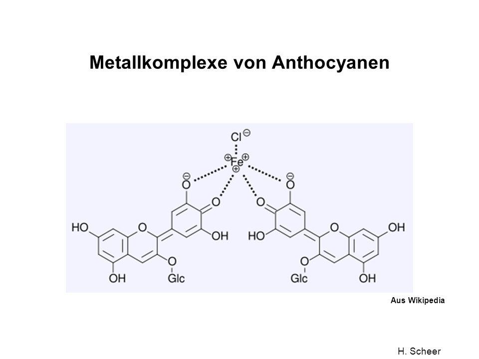 Metallkomplexe von Anthocyanen