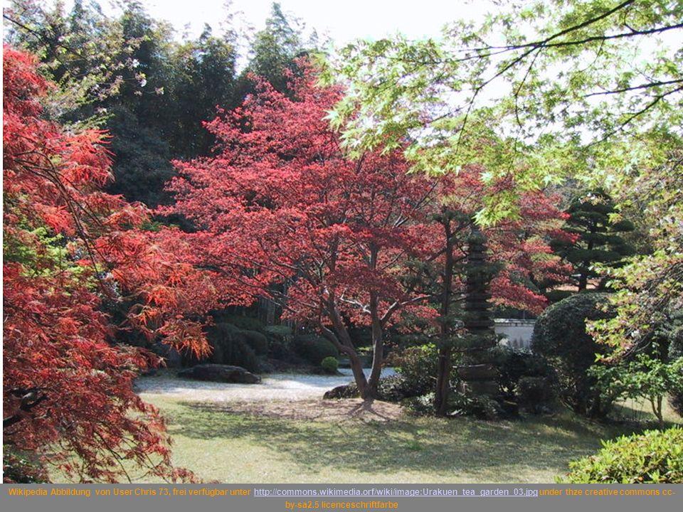 Wikipedia Abbildung von User Chris 73, frei verfügbar unter http://commons.wikimedia.orf/wiki/image:Urakuen_tea_garden_03.jpg under thze creative commons cc-by-sa2.5 licenceschriftfarbe