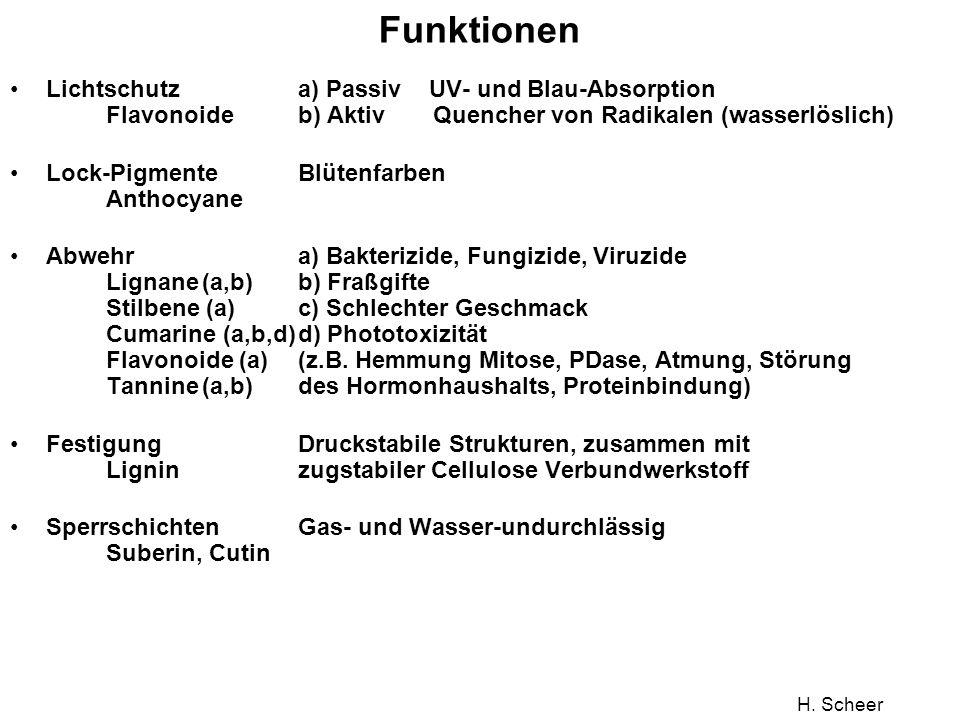 Funktionen Lichtschutz a) Passiv UV- und Blau-Absorption Flavonoide b) Aktiv Quencher von Radikalen (wasserlöslich)