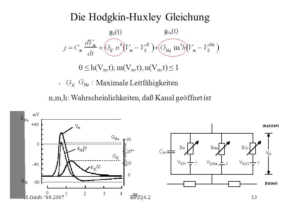 Die Hodgkin-Huxley Gleichung