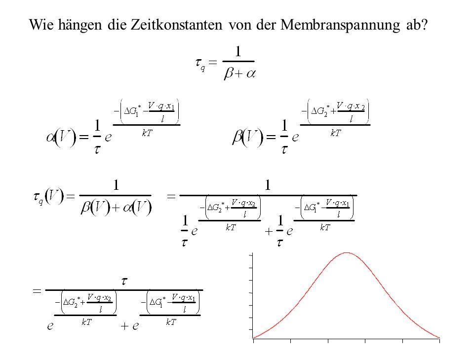 Wie hängen die Zeitkonstanten von der Membranspannung ab