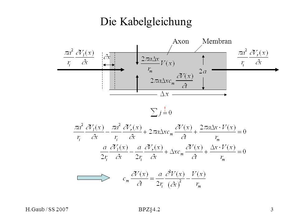 Die Kabelgleichung Axon Membran ! H.Gaub / SS 2007 BPZ§4.2