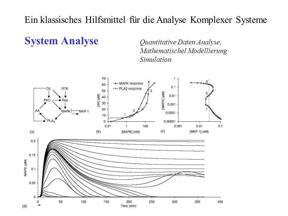 Ein klassisches Hilfsmittel für die Analyse Komplexer Systeme