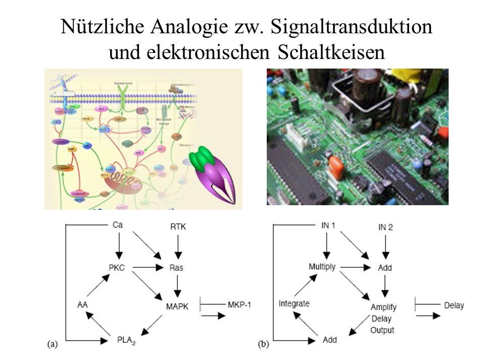 Nützliche Analogie zw. Signaltransduktion und elektronischen Schaltkeisen