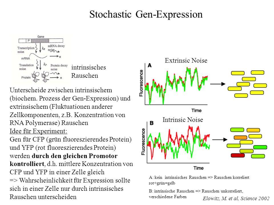 Stochastic Gen-Expression