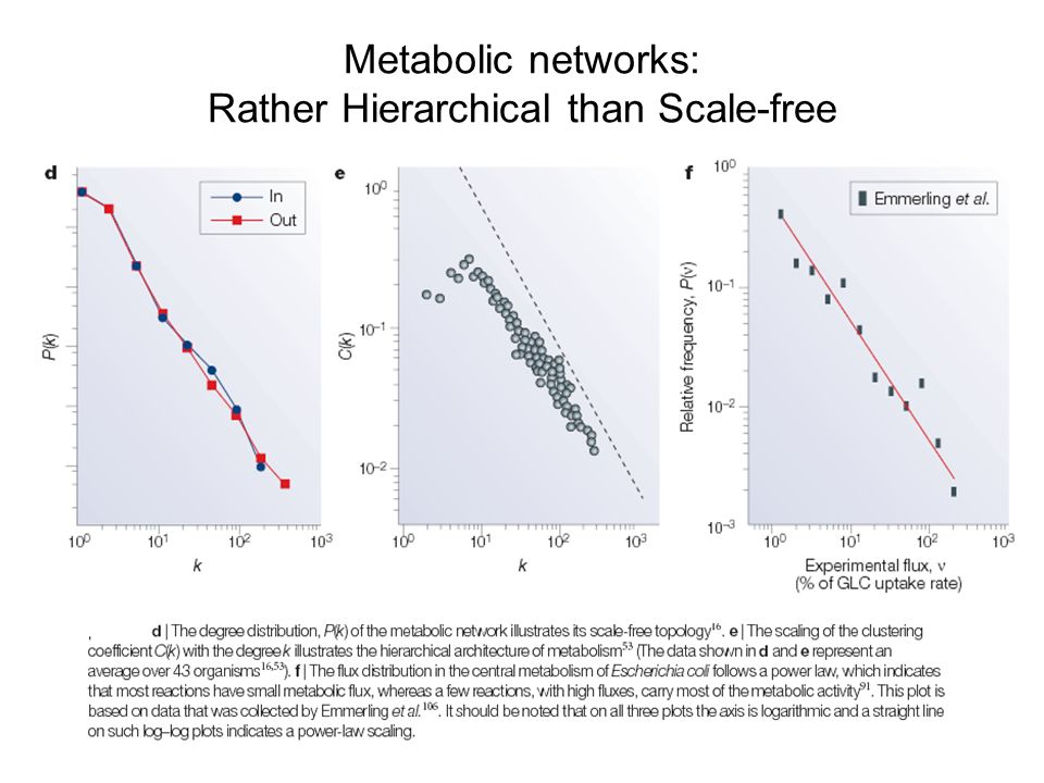 Metabolic networks: Rather Hierarchical than Scale-free