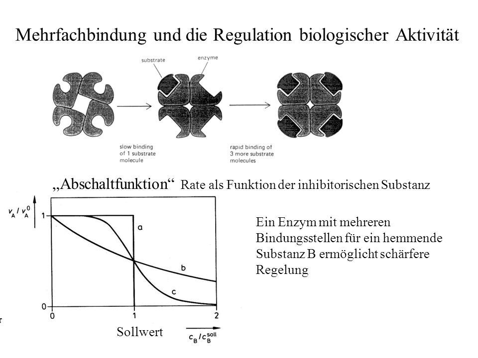 Mehrfachbindung und die Regulation biologischer Aktivität