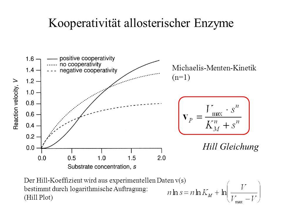 Kooperativität allosterischer Enzyme