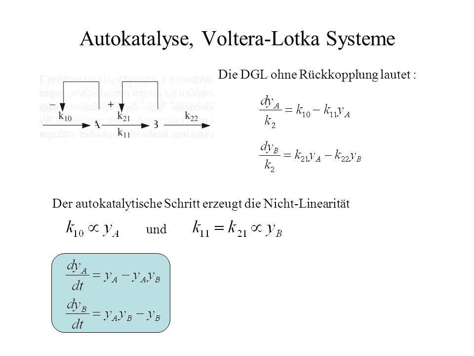 Autokatalyse, Voltera-Lotka Systeme