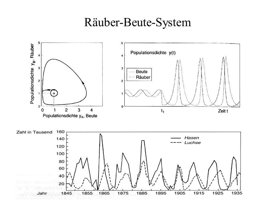 Räuber-Beute-System