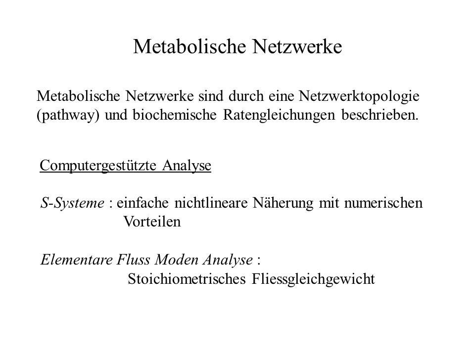 Metabolische Netzwerke