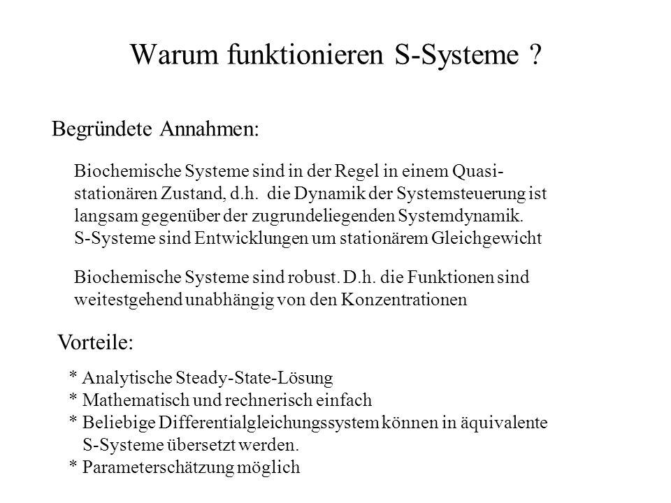 Warum funktionieren S-Systeme