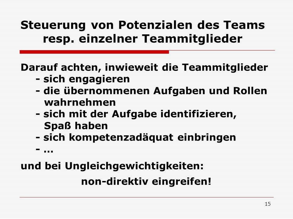 Steuerung von Potenzialen des Teams resp. einzelner Teammitglieder