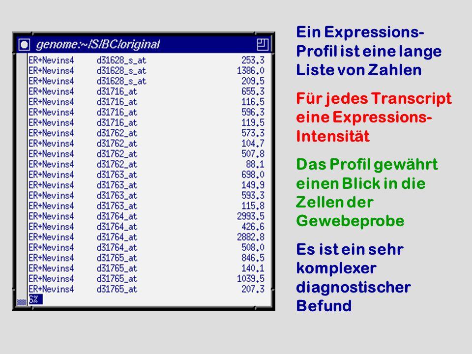 Ein Expressions- Profil ist eine lange Liste von Zahlen