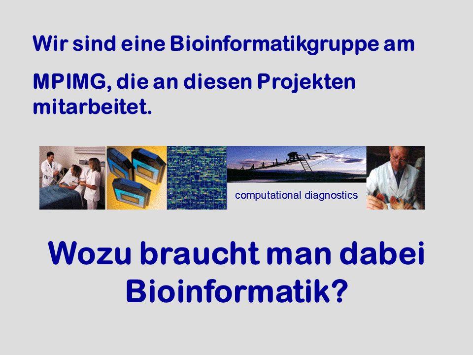 Wozu braucht man dabei Bioinformatik