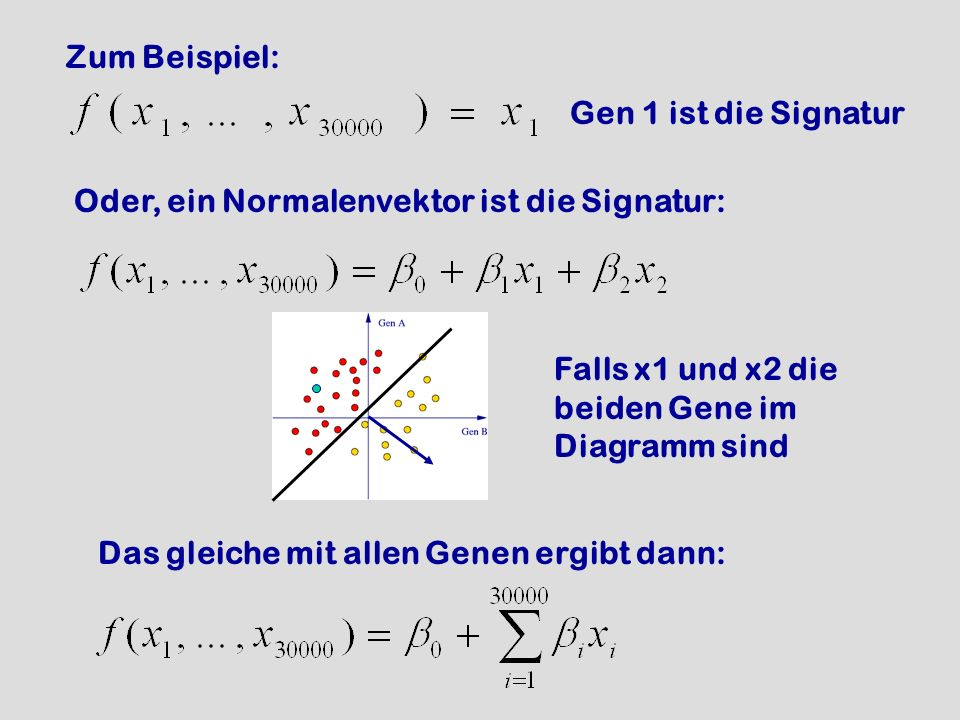 Zum Beispiel: Gen 1 ist die Signatur. Oder, ein Normalenvektor ist die Signatur: Falls x1 und x2 die beiden Gene im Diagramm sind.