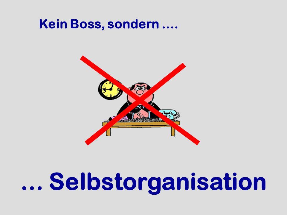 Kein Boss, sondern .... ... Selbstorganisation