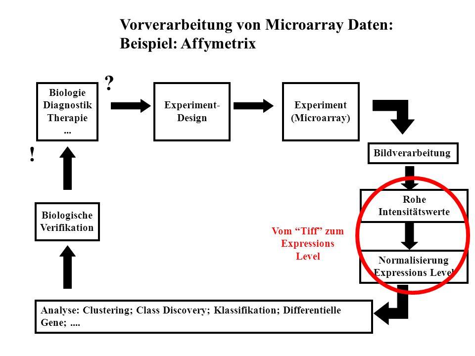 ! Vorverarbeitung von Microarray Daten: Beispiel: Affymetrix