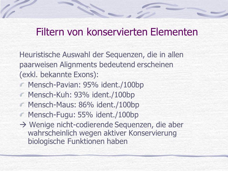 Filtern von konservierten Elementen