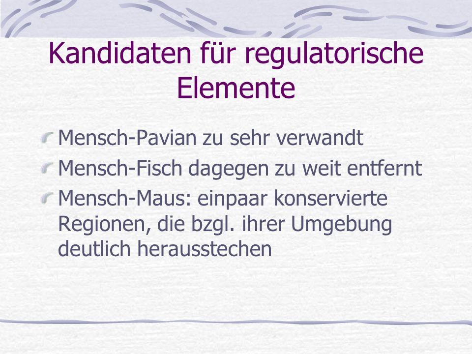 Kandidaten für regulatorische Elemente
