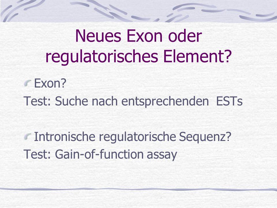 Neues Exon oder regulatorisches Element