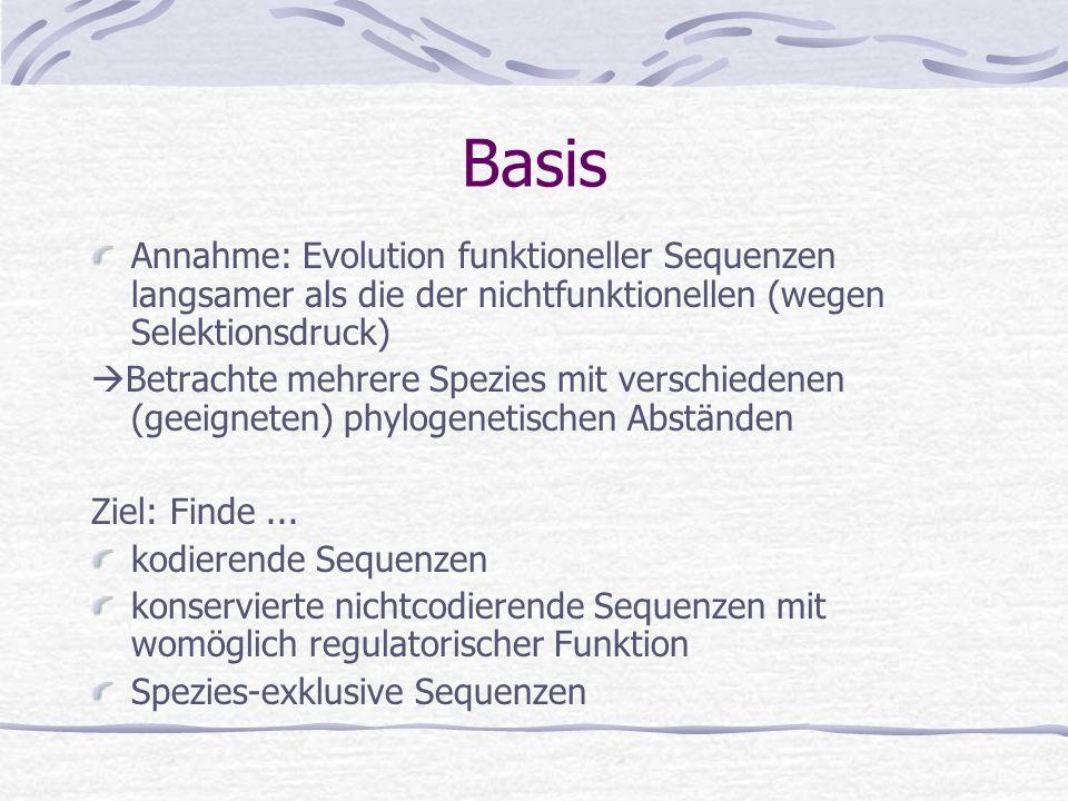 BasisAnnahme: Evolution funktioneller Sequenzen langsamer als die der nichtfunktionellen (wegen Selektionsdruck)