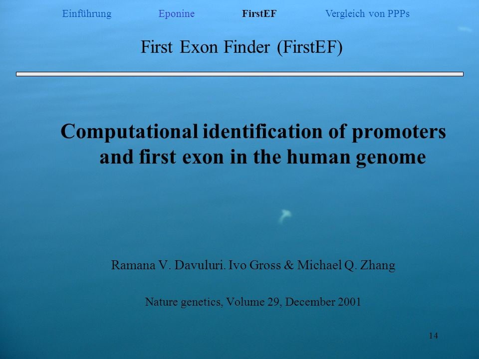 First Exon Finder (FirstEF)