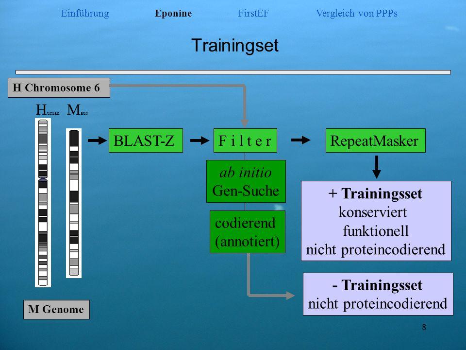 Trainingset - Trainingsset nicht proteincodierend Human Maus BLAST-Z