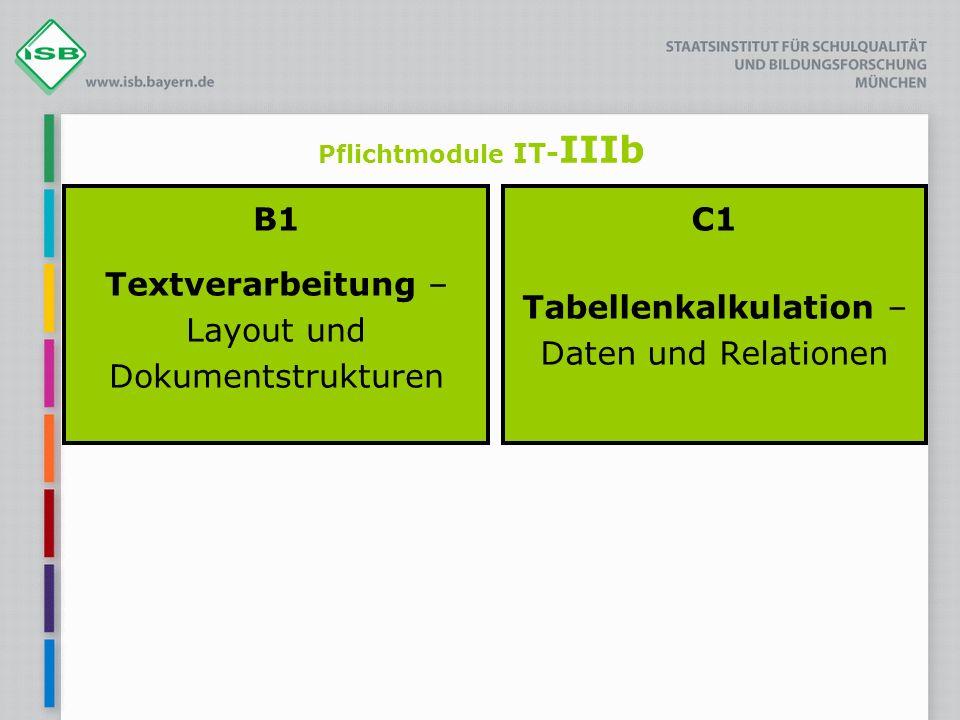 Pflichtmodule IT-IIIb