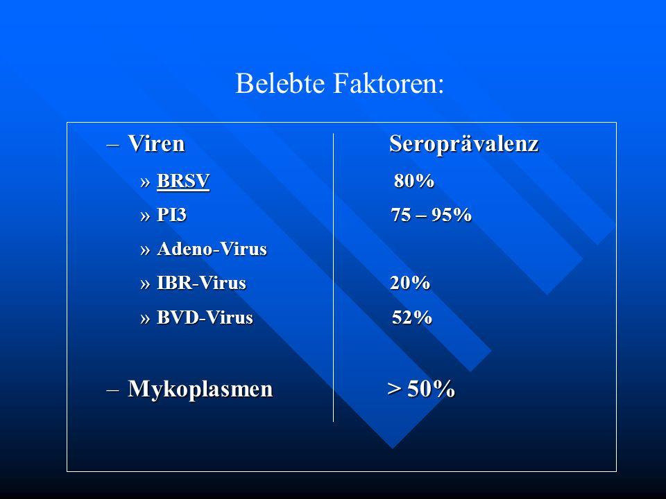 Belebte Faktoren: Viren Seroprävalenz Mykoplasmen > 50% BRSV 80%