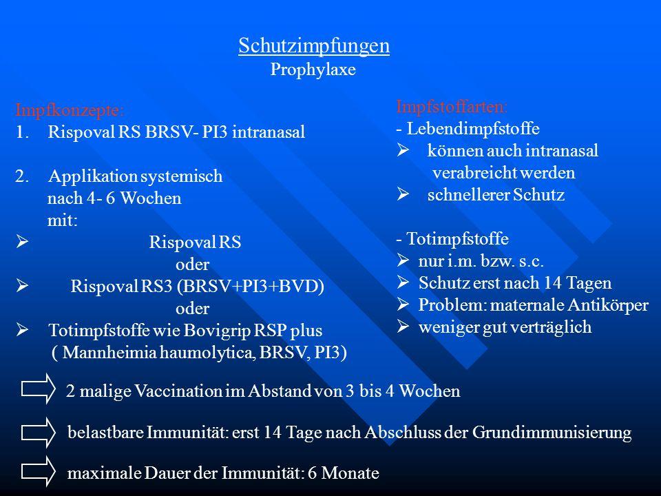 Schutzimpfungen Prophylaxe Impfstoffarten: Impfkonzepte:
