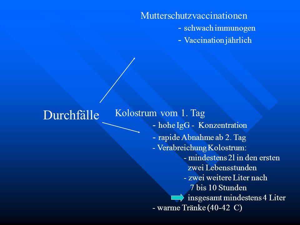 Durchfälle Mutterschutzvaccinationen - schwach immunogen