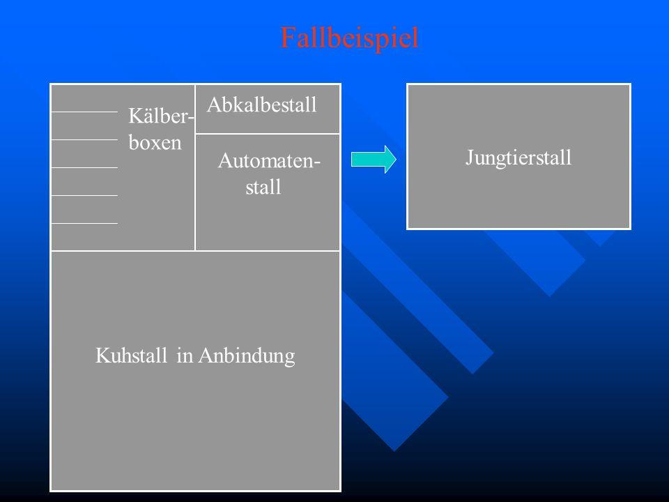Fallbeispiel Abkalbestall Kälber- boxen Jungtierstall Automaten- stall