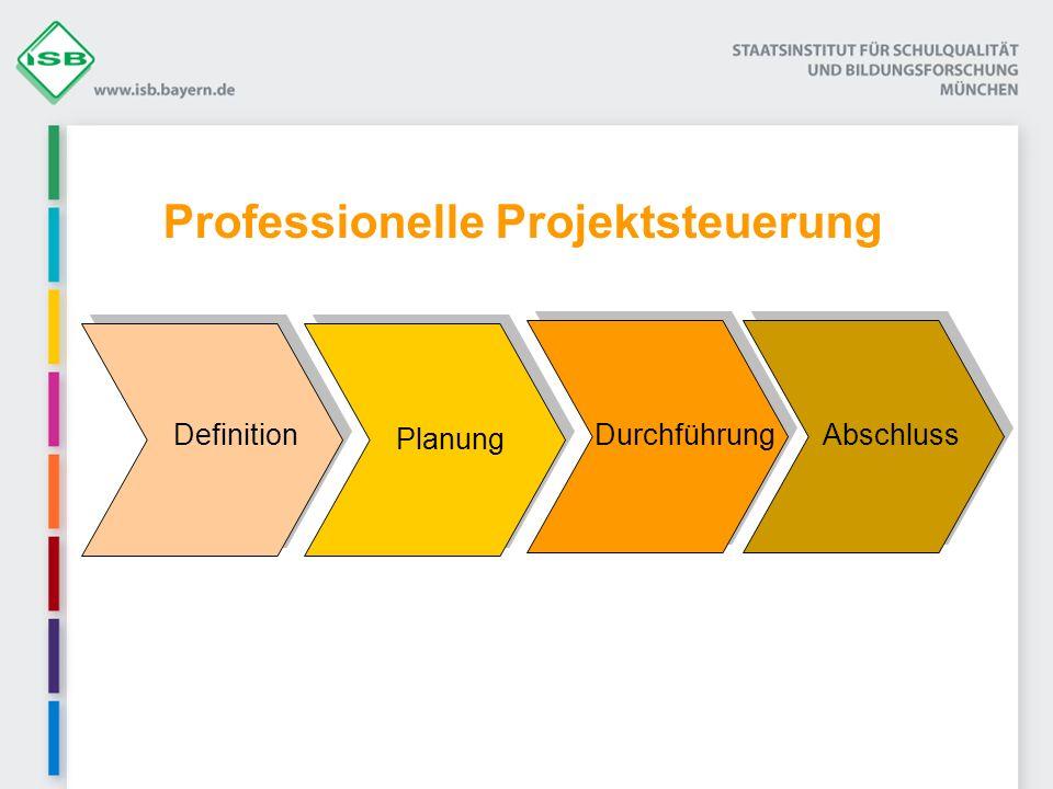 Professionelle Projektsteuerung