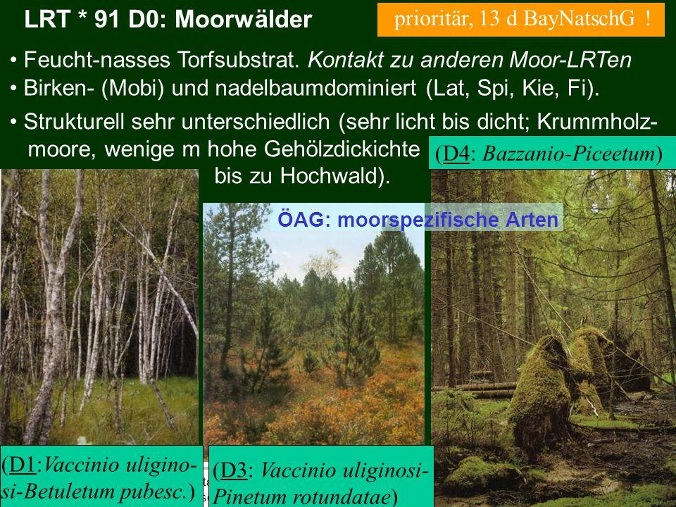 LRT * 91 D0: Moorwälder prioritär, 13 d BayNatschG !