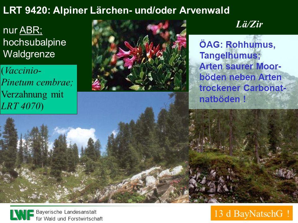 LRT 9420: Alpiner Lärchen- und/oder Arvenwald Lä/Zir nur ABR;