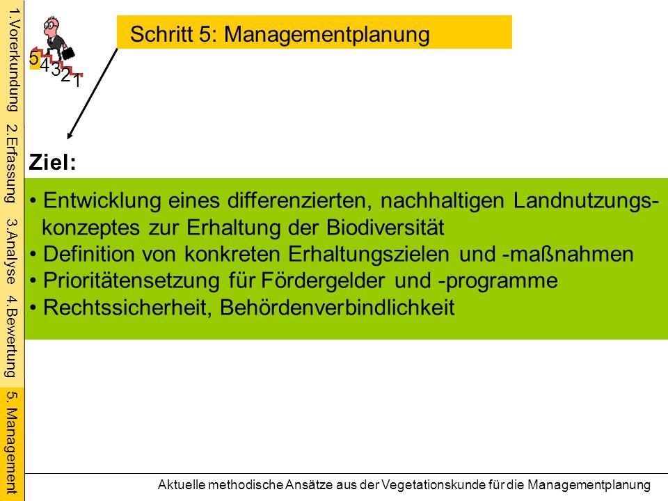 Schritt 5: Managementplanung
